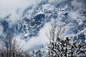 5N 6D Manali Shimla tour package