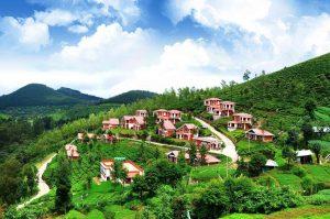 Mysore Ooty